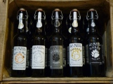 deli malt delimalt cave ours bière montpellier craft beer